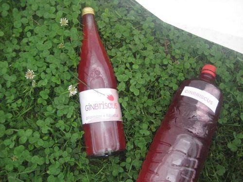 bouteille verre et bouteille plast