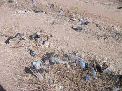 Chemin déchets