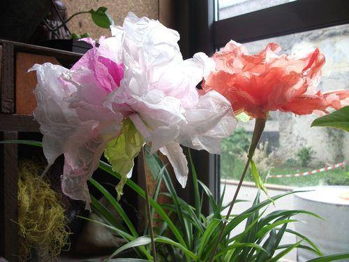 Fleurs plastic dans plantes