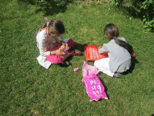 2 soeurs crochet herbe
