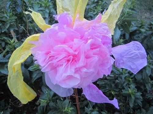 Fleur rose dans la menthe