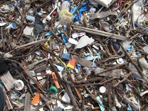 Concentré de déchets
