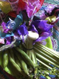 Légumes et plastic