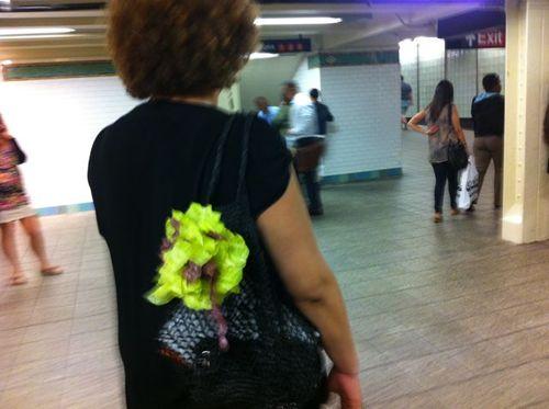 Filet fleur Catherine subway
