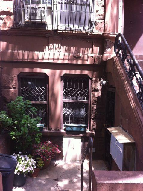 Basement garden in Harlem