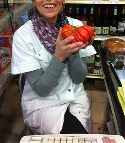 Dalila tomate ancienne