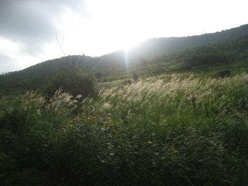 Lumire_contrejour_montagne